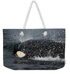 Weekender Tote Bag featuring the photograph The Shake - Wildlife Art by Jordan Blackstone