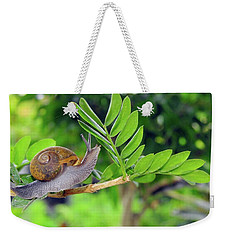 The Snail Weekender Tote Bag