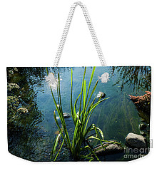 The Song Of Small Stream Weekender Tote Bag