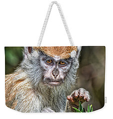 The Stare A Baby Patas Monkey  Weekender Tote Bag by Jim Fitzpatrick