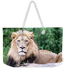 The Stare Down Weekender Tote Bag