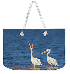 Weekender Tote Bag featuring the photograph The Stretch by Kim Hojnacki