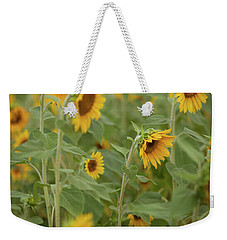 The Sunflower Patch Weekender Tote Bag