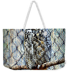 Weekender Tote Bag featuring the photograph The Textured Owl by AJ Schibig