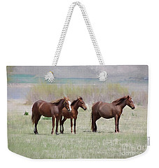 Weekender Tote Bag featuring the photograph The Three Amigos by Benanne Stiens