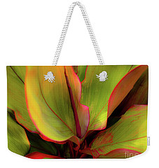 Weekender Tote Bag featuring the photograph The Ti Leaf Plant In Hawaii by D Davila