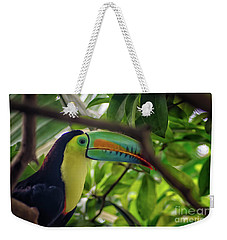 The Toucan Weekender Tote Bag