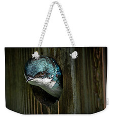 The Tree Swallow Weekender Tote Bag