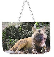 Weekender Tote Bag featuring the painting The Wanderer by Judy Kay