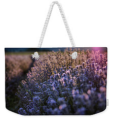 The Warm Embrace Of The Latest Sun Rays Weekender Tote Bag