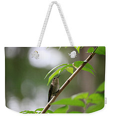 Weekender Tote Bag featuring the photograph The Watcher by Rick Morgan