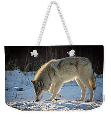 The Wolf Weekender Tote Bag