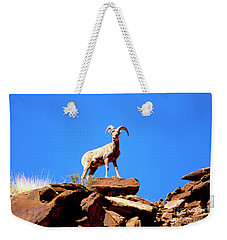The Young Ram Reaches The Sky Line Weekender Tote Bag