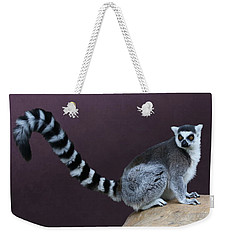 Thereby Hangs A Tail Weekender Tote Bag