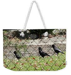 Thirsty Trio Of Ravens Weekender Tote Bag