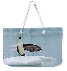 Weekender Tote Bag featuring the photograph This Way by Tony Beck