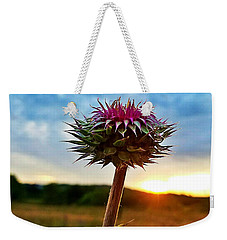 Weekender Tote Bag featuring the photograph Thistle At Sunrise by Maria Urso