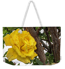Thorny Love Weekender Tote Bag by Charles Ables