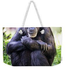 Thoughtful Chimpanzee  Weekender Tote Bag by Stephanie Hayes