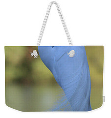 Weekender Tote Bag featuring the photograph Thoughtful Heron by Kim Henderson