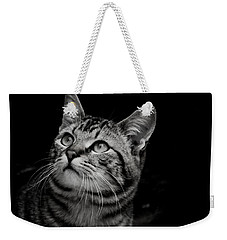 Weekender Tote Bag featuring the photograph Thoughtful Tabby by Chriss Pagani