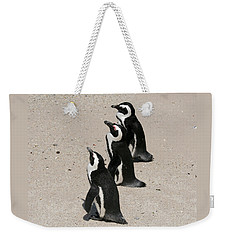 Three African Penguins Weekender Tote Bag