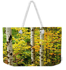 Three Birch Weekender Tote Bag by Michael Peychich
