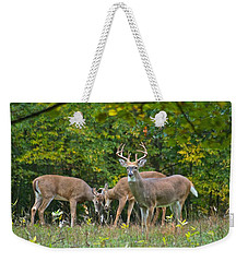 Three Bucks_0054_4463 Weekender Tote Bag