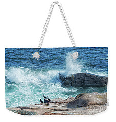 Three Cormorants At Monument Cove, Acadia National Park Weekender Tote Bag