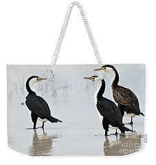 Weekender Tote Bag featuring the photograph Three Cormorants by Werner Padarin