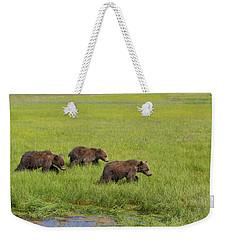 Three Cubs Moving On Weekender Tote Bag