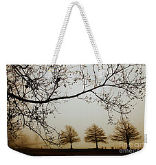 Weekender Tote Bag featuring the photograph Three Cypress In The Mist by Iris Greenwell