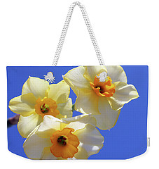 Weekender Tote Bag featuring the photograph Three Daffodils by Judy Vincent