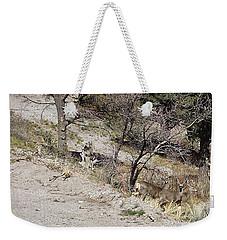 Dry Mountain Slope With Three Deer Weekender Tote Bag