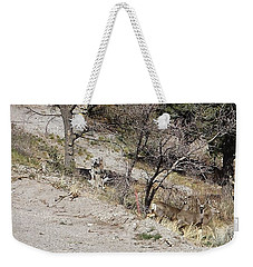 Dry Mountain Slope With Three Deer Weekender Tote Bag