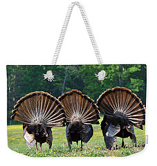 Three Fans Weekender Tote Bag by Todd Hostetter