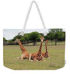 Three Giraffe At Fossil Rim Weekender Tote Bag by Jayne Wilson
