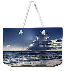 Weekender Tote Bag featuring the photograph Three Ibises Before The Storm by Steven Sparks