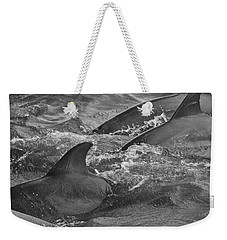 Weekender Tote Bag featuring the photograph Three Peas In A Pod by Steven Santamour
