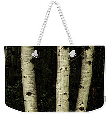 Weekender Tote Bag featuring the photograph Three Pillars Of The Forest by James BO Insogna