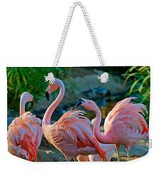 Three Pink Flamingos Strutting Their Stuff Weekender Tote Bag
