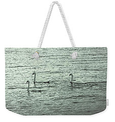 Weekender Tote Bag featuring the photograph Three Swans by The Art Of Marilyn Ridoutt-Greene