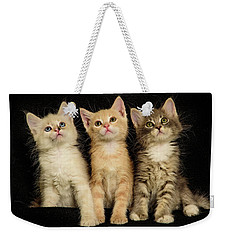 Three Wee Kittens Weekender Tote Bag