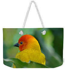 Through A Child's Eyes - Close Up Yellow And Orange Bird 2 Weekender Tote Bag by Exploramum Exploramum