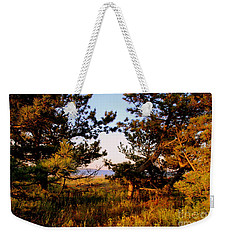 Through The Pine Grove Weekender Tote Bag