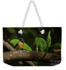 Tickell's Blue Flycatcher Weekender Tote Bag
