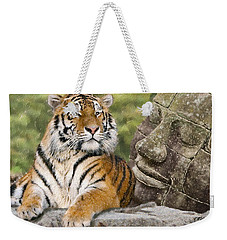 Tiger And Buddha Weekender Tote Bag by Kathie Miller