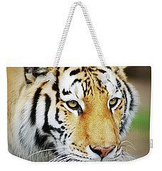 Tiger Eyes Weekender Tote Bag by Michael Peychich