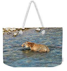 Tiger In The Water Weekender Tote Bag