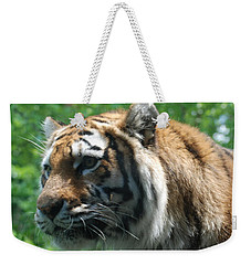 Weekender Tote Bag featuring the photograph Tiger Profile by Richard Bryce and Family